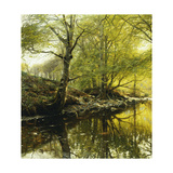 A Wooded River Landscape Prints by Peder Mork Monsted