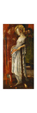 Saint Elizabeth of Hungary Premium Giclee Print by Friedrich		 Stahl