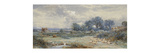 A View on Holmwood Common, Surrey Premium Giclee Print by Myles Birket		 Foster