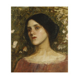 The Rose Bower Prints by John William Waterhouse