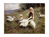 Feeding Geese Giclee Print by Alexander Koester