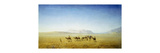 An Arab Caravan in the Desert Premium Giclee Print by Henrik August		 Ankarcrona