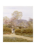 At School Green, Isle of Wight Giclee Print by Helen Allingham