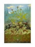 Sunflowers and Poppies Giclée-Druck von Paul Ranson