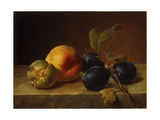 A Peach and Plums on a Marble Ledge Giclee Print by Johann Wilhelm		 Preyer