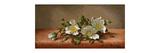 Cherokee Roses Premium Giclee Print by Martin Johnson Heade