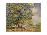 Walnut Tree at Sablons in Spring Giclee Print by Alfred		 Sisley