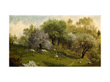 Girl on a Hillside, Apple Blossoms Prints by Martin Johnson		 Heade