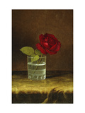 A Red Rose Giclee Print by Martin Johnson Heade