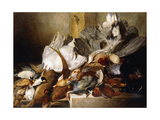 A Still Life of Dead Birds Giclee Print by W.		 Oakes