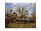 Pear Tree and Flowers in Eragny, Morning Prints by Camille Pissarro