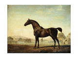 Sweetwilliam', a Bay Racehorse, in a Paddock Giclee Print by George		 Stubbs
