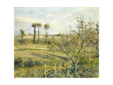 Sunset at Valhermeil near Pontoise Giclee Print by Camille Pissarro
