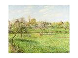 Camille Pissarro - Morning, Spring, Grey Weather, Eragny Digitálně vytištěná reprodukce