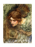 A Study for the Head of Venus Giclee Print by John William Waterhouse