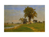 Old Elm at Medfield Giclee Print by Sr., George Inness