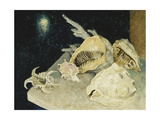 Shells Prints by Philpot Glyn Warren