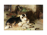 Motherless: The Shepherd's Pet Premium Giclee Print by Walter		 Hunt