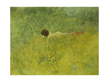On the Grass Print by Carl		 Larsson