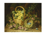 Primroses in a Basket, Japonica and a Bird's Nest Posters by Charles Thomas		 Bale
