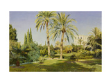 The Royal Gardens, Athens Posters by Peder Monsted