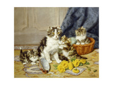 Playful Kittens Premium Giclee Print by Daniel		 Merlin