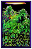Home Grown College Blacklight Poster Print