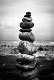 Balancing Rocks on Beach Black White Plastic Sign Plastic Sign