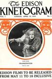 Frankenstein Movie Augustus Phillips 1910 Plastic Sign Plastic Sign