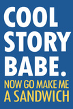Cool Story Babe Now Make Me a Sandwich Humor Plastic Sign Plastic Sign