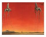 Les Elephants Affiches par Salvador Dalí