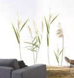 Wall Grasses - Duvar Çıkartması
