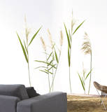 Wall Grasses Vinilo decorativo