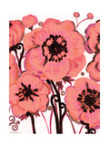 Pink Anemone Prints by Natasha Wescoat