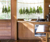Hanging Herbs Naklejka na okno
