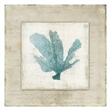 Chambray Coral I - Mini Art by Aimee Wilson