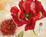 Passion for Poppies II Posters by  Nan