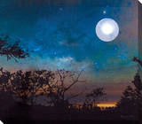 Moonlight Stretched Canvas Print