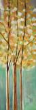 Shandelee Woods II Posters by Susan Jill
