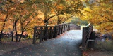 Autumn Overpass - Special Prints by Jessica Jenney