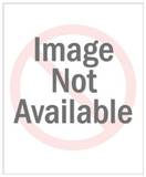 Jackie Robinson Stealing Home Plastic Sign Plastikskilte