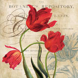 Botanist's Repository Posters by Carol Robinson