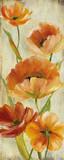Flower Dance I Poster von Carol Robinson