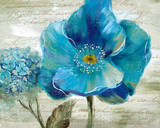Blue Poppy Poem II Prints by  Nan