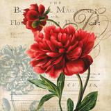 The Botanist Magazine Posters av Carol Robinson