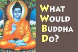 What Would Buddha Do Funny Plastic Sign Plastic Sign by  Ephemera