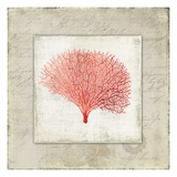 Coral Linen II - Mini Posters by Aimee Wilson