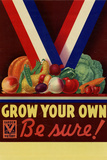 Grow Your Own Be Sure Safe Food WWII War Propaganda Plastic Sign Wall Sign