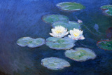 Claude Monet Water-Lilies 7 Plastic Sign Plastic Sign by Claude Monet