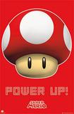 Super Mario Bros Power Up Posters